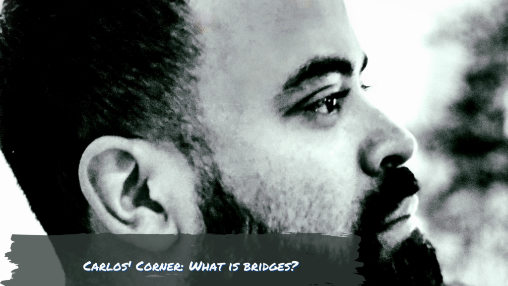 Carlos Corner What is BRIDGES